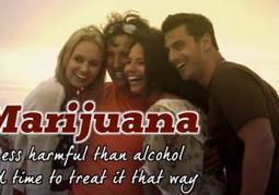 Pro-marijuana ads pulled from NASCAR's Brickyard 400 - New York Daily News   marijuanas   Scoop.it