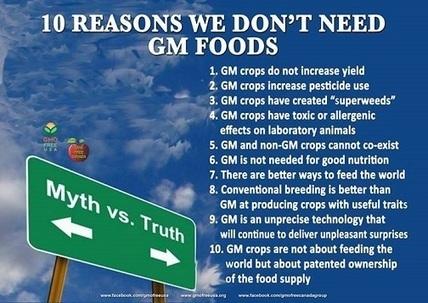 10 reasons we don't need GM foods | zestful living | Scoop.it