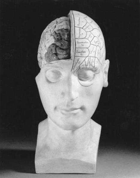El bilingüismo modifica las profundidades del cerebro a lo largo de la vida | Preparándote para un futuro incierto | Scoop.it