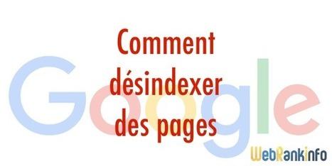 Comment désindexer/supprimer des pages de Google ?   rédaction web et référencement   Scoop.it
