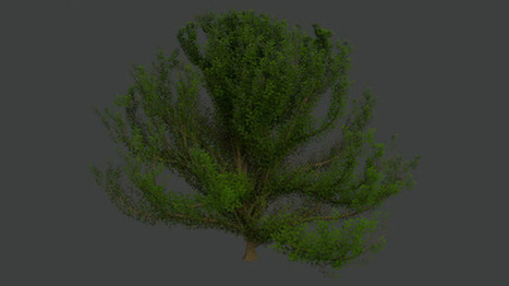 Realistic Tree in Cycles Tutorial in Blender » Download Free ... | sanask | Scoop.it