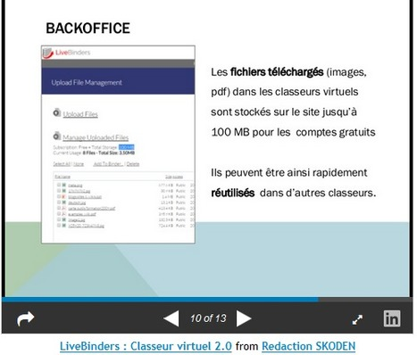 Portail Skoden pour la formation ouverte et à distance - Classeur Internet et éditorialisation 2.0 : LiveBinders | TIC et TICE mais... en français | Scoop.it
