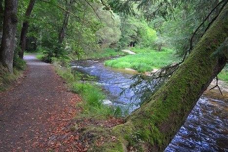 Parádní cyklovýlet po trase bývalé železnice: Úpatím Bavorského lesa | letom svetom internetom | Scoop.it