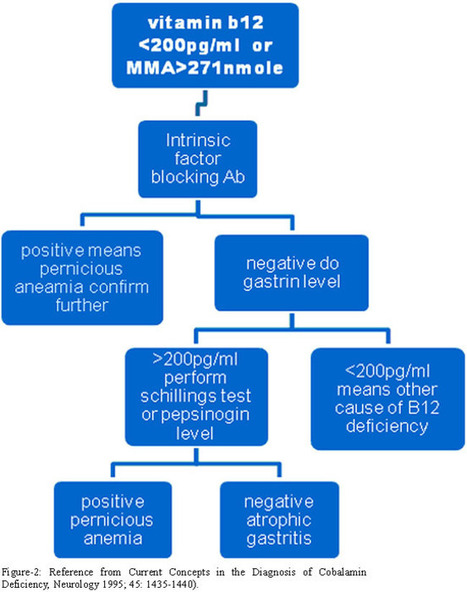Misdiagnosed vitamin B12 deficiency a challenge to be confronted by use of modern screening markers | B12 Blog | Scoop.it