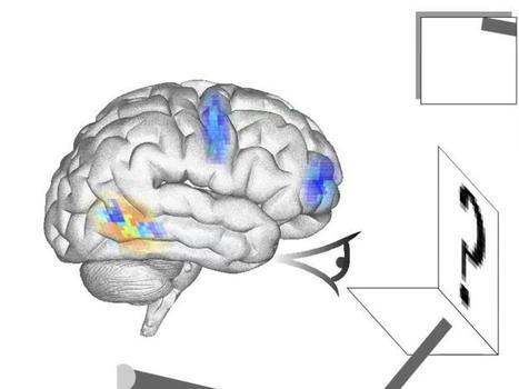 Cérebro artificial imita percepção humana e consegue agir | Tecnologia e Comunicação | Scoop.it