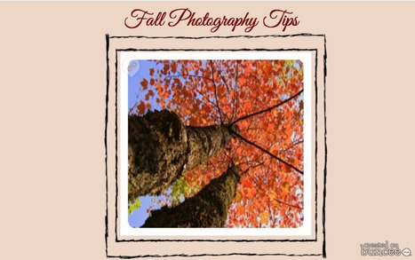 12 Autumn Photography Tips | Love it ? Create your own | Buncee Creative | Scoop.it