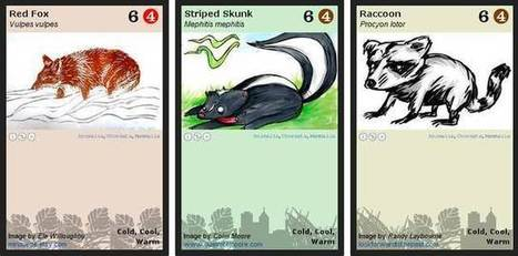 Biodiversity open card game, like Pokemon for science | GarryRogers NatCon News | Scoop.it