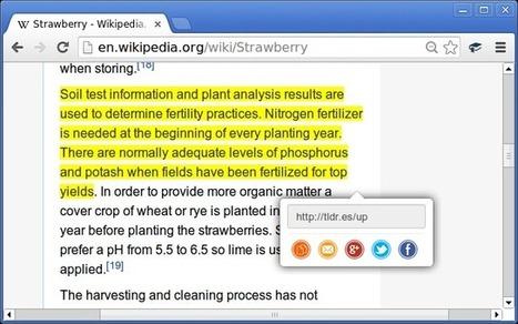 TLDRify. Citer et partager du texte depuis un site web | Le Top des Applications Web et Logiciels Gratuits | Scoop.it
