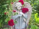 Reinhardt Rose Garden | Annie Haven | Haven Brand | Scoop.it
