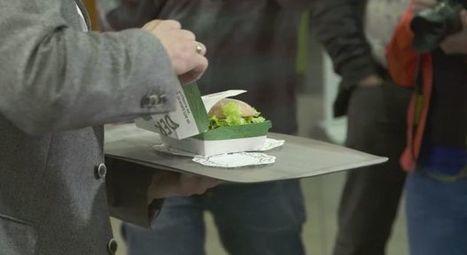 Fastfood: Warum der Biofleisch-Burger von McDonald's gescheitert ist | Agrarforschung | Scoop.it