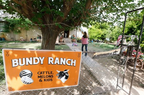 Right's Rancher Knows 'About the Negro' | News in english | Scoop.it