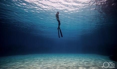 Les effets de la plongée sur le corps - Océan Surf Report | Dans mon sac de plouf | Scoop.it