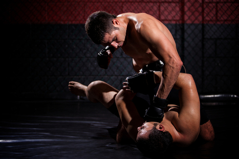More On Concussions in MMA | Grapplearts | concussions in MMA | Scoop.it