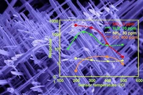 Memristors and Nanowires   Embodied Zeitgeist   Scoop.it