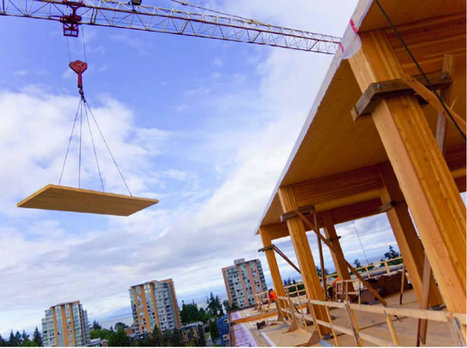 Tall Wood Buildings Coming To Ontario - OPTION1 FINANCIAL | Real Estate | Scoop.it