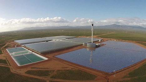 Energía solar para desalar agua y cultivar en el desierto, una idea no tan buena | Cultivos | Scoop.it