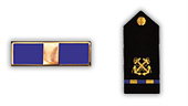 Uniforms & Insignias: Navy.com | The Navy | Scoop.it