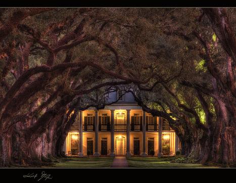 Oak Alley Plantation / Kurt Martin | Oak Alley Plantation: Things to see! | Scoop.it