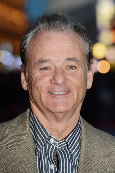 Bill Murray Cast in Afghanistan-Set Comedy | Movies | Scoop.it