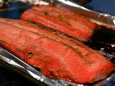 La Norvège reconnaît que son saumon peut être dangereux pour la santé - Rue89 | Le développement durable et la communication : donner du sens aux deux à la fois | Scoop.it
