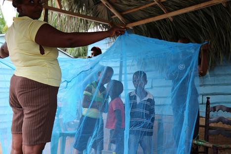 UN News - UN Millennium Development Goal target to reduce malaria burden achieved   Communication for Sustainable Social Change   Scoop.it