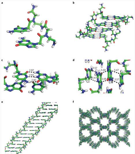 Researchers develop molecular DNA backbone of super-slim, bendable digital displays   Amazing Science   Scoop.it