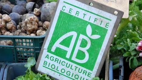 Dans la Manche, l'agriculture bio, alternative face à la crise | La Bio en question | Scoop.it