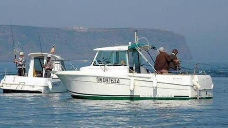 La pêche de plaisance compte ses effectifs | Pêche & Pêcheurs | Scoop.it