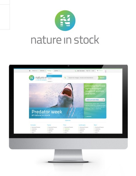 Exceptional nature and wildlife stock photos: Nature in Stock | Corporate Identity | Scoop.it