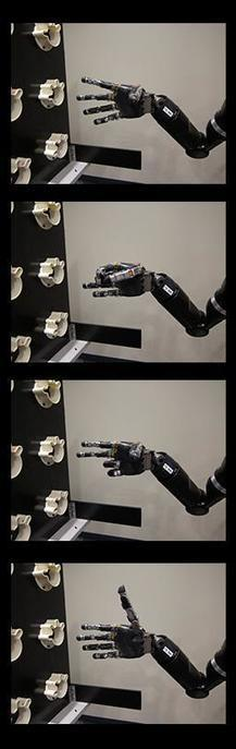 Mind Controlled Robot Arm Project | Disabled World Updates and News | Scoop.it