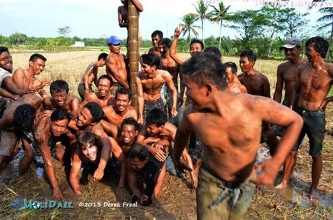 Panjat Pinang, The Slippery Traditional Game Of Indonesia - HoliDaze Blog | www.thetravelnews.it | Scoop.it