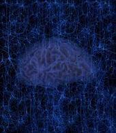 Data mining opens the door to predictive neuroscience | Social Foraging | Scoop.it