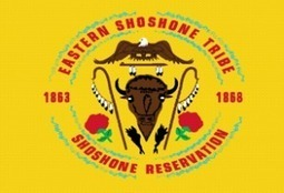 Eastern Shoshone Tribe names Sara Robinson as new Tribal Liaison with state government | Tribal Government | Scoop.it