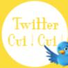 Tout sur Twitter