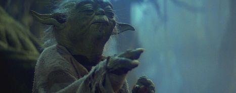 Bye Felicia, Yoda are running for president | Kickin' Kickers | Scoop.it