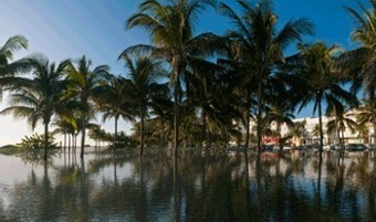 Sea level rise will turn Miami into American Atlantis | Nature Animals humankind | Scoop.it