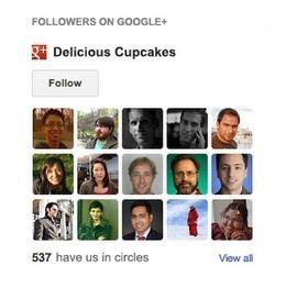 Haz crecer tu audiencia con el gadget de seguidores de Google+ | Audiencias | Scoop.it