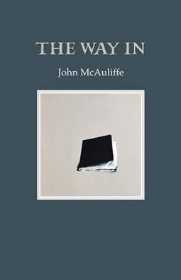 Glowing Review of 'The Way In' by John McAuliffe in Southword | The Irish Literary Times | Scoop.it