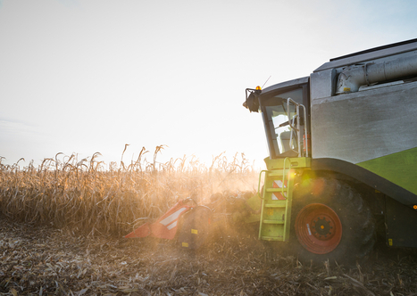 Biofuel Made From Corn Waste Less 'Green' Than Gasoline - D-brief ... | Global Pollution | Scoop.it