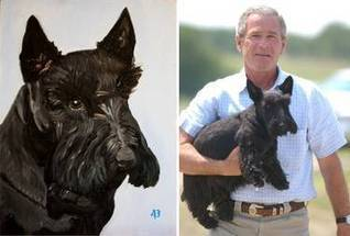 Barney, President George W. Bush's 'first dog' and video star, dies at age 12 - Dallas Morning News | Restore America | Scoop.it