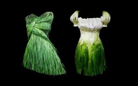 Yeonju Sung's Food Outfits - Neatorama | Hipsters | Scoop.it