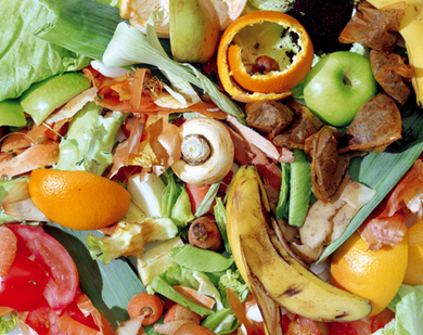 """If elected, Labour would ban food waste from landfill (""""radical but doable, tho difficult"""") 