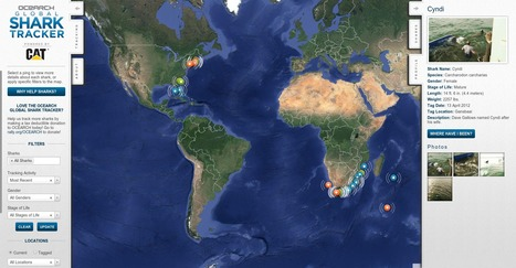 OCEARCH Global Tracking Central | Emergent Digital Practices | Scoop.it