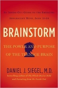 Book Review: 'Brainstorm: The Power and Purpose of the Teenage ... | Creativity, Gender & the Authenic Self | Scoop.it