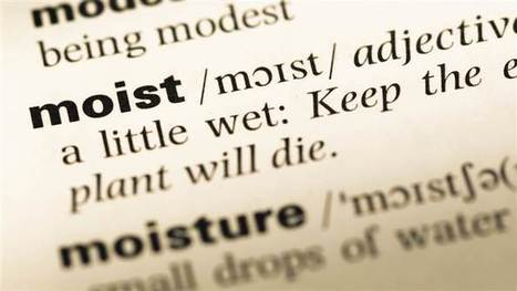 New research reveals why 'moist' is the grossest word. Do you agree? | Kickin' Kickers | Scoop.it