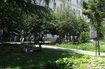 [Vidéo] La nature en ville comme élément de confort climatique - Biodiv'ille   ville et jardin   Scoop.it