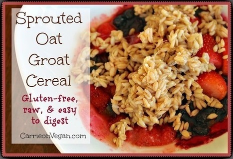 Sprouted Oat Groat Cereal | My Vegan recipes | Scoop.it
