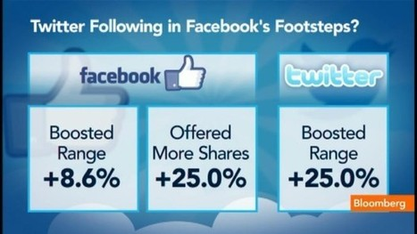 Twitter Stock Premium: Worth More Than Facebook?: Video | Social Media Company Valuations and Value Drivers | Scoop.it