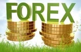 Best Forex Software South Africa | Forex South Africa | Scoop.it