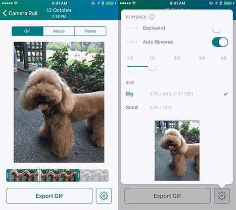 How to Turn iPhone Live Photos Into GIFs in One Easy Step by Nancy Messieh | Educational technology , Erate, Broadband and Connectivity | Scoop.it
